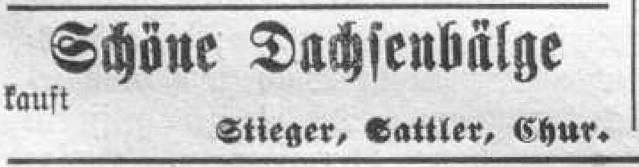 Adolf Stieger (1852-1932)