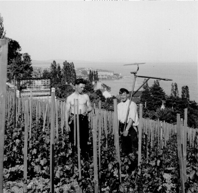 Samuel Tinembart et Fritz Tinembart au Vignoble